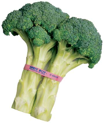 Custom Printed Rubber Band for Broccoli